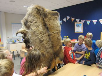 Archeon in the classroom