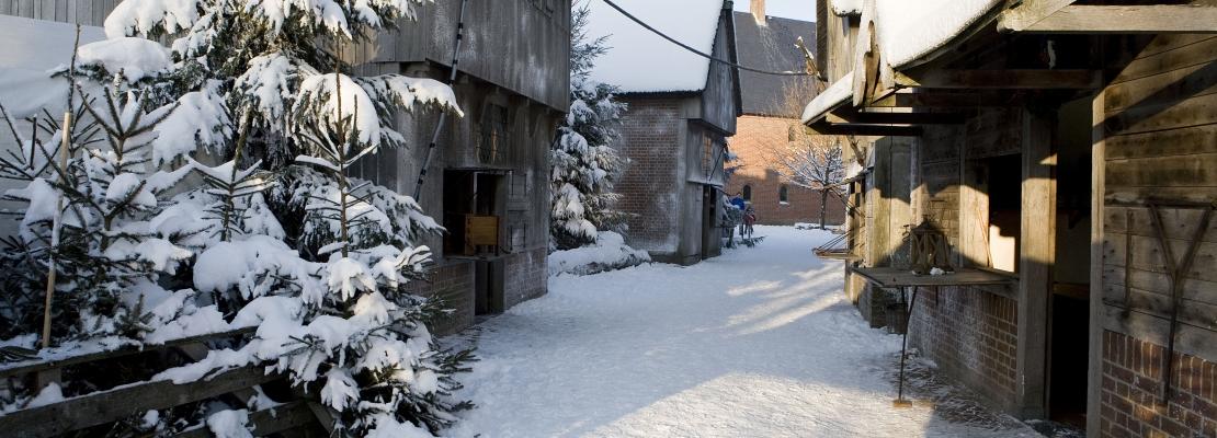 Winter_Archeon.jpg